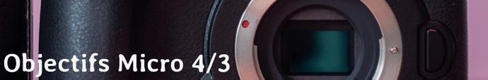 Capteur Micro 4/3